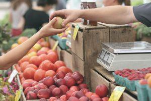 5 עובדות מפתיעות על הפירות המוכרים והאהובים ביותר!
